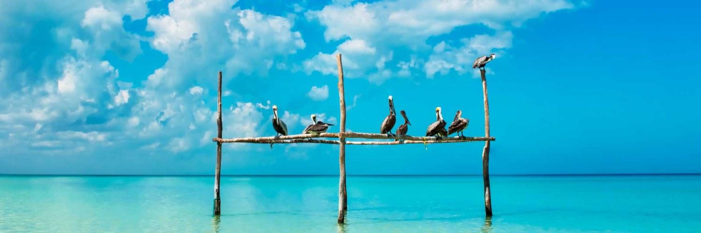 Île Holbox Mexique
