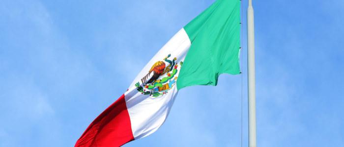 el grito mexique découverte
