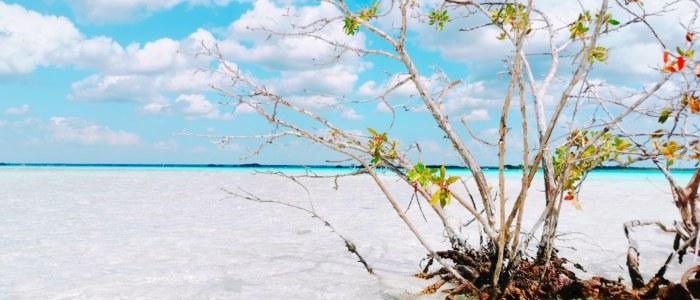 lagune bacalar