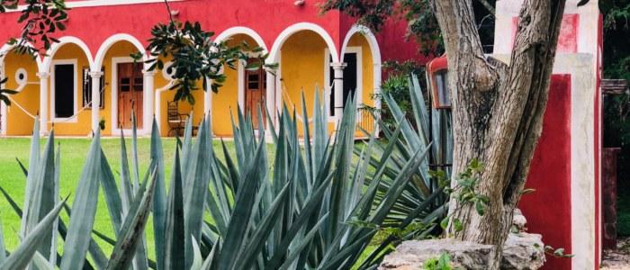 HACIENDA TICUM MEXIQUE DECOUVERTE