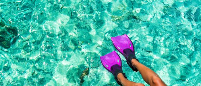 Snorkel Mexique