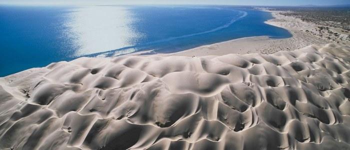 Guerrero Negro Basse Californie Mexique