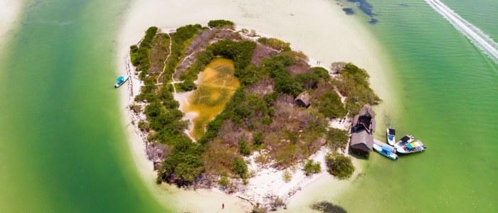 Iles aux oiseaux Holbox Mexique
