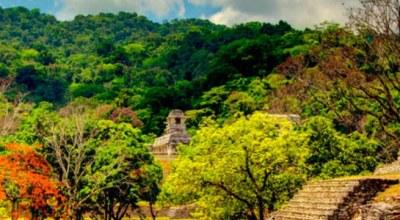 Avis voyageur au Mexique : Sylvie G.