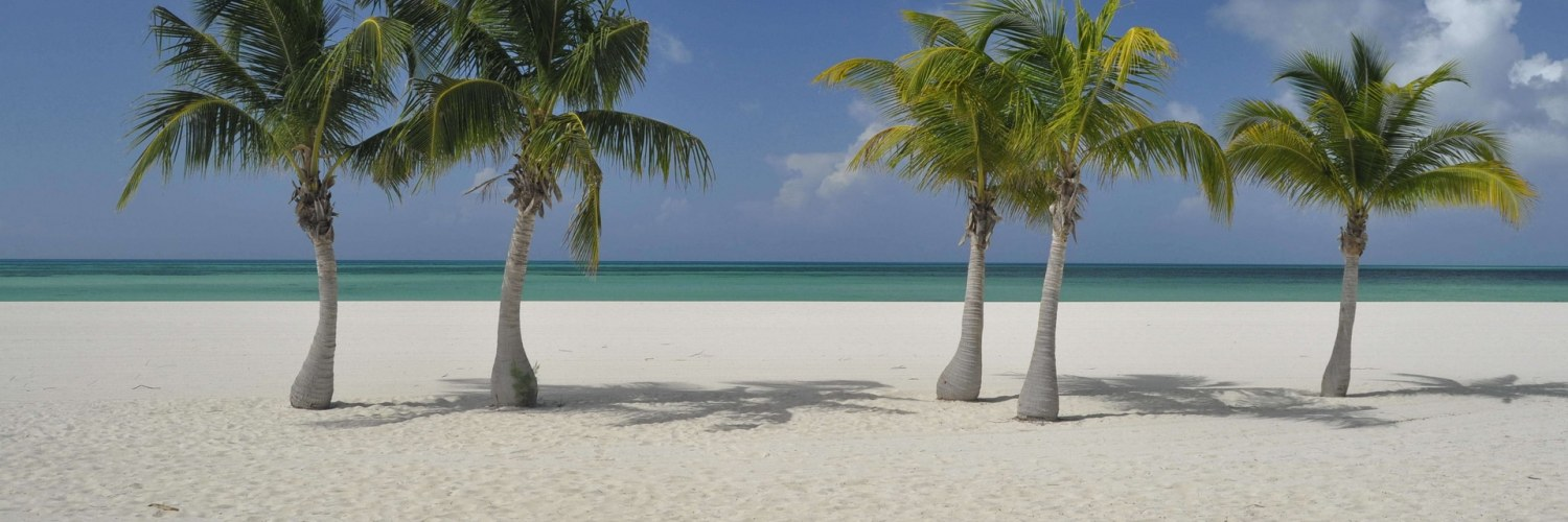 plage_palmiers_cozumal