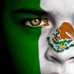 Avis voyageur au Mexique Carlos D.