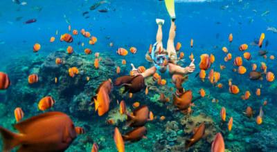Snorkelling Mexique