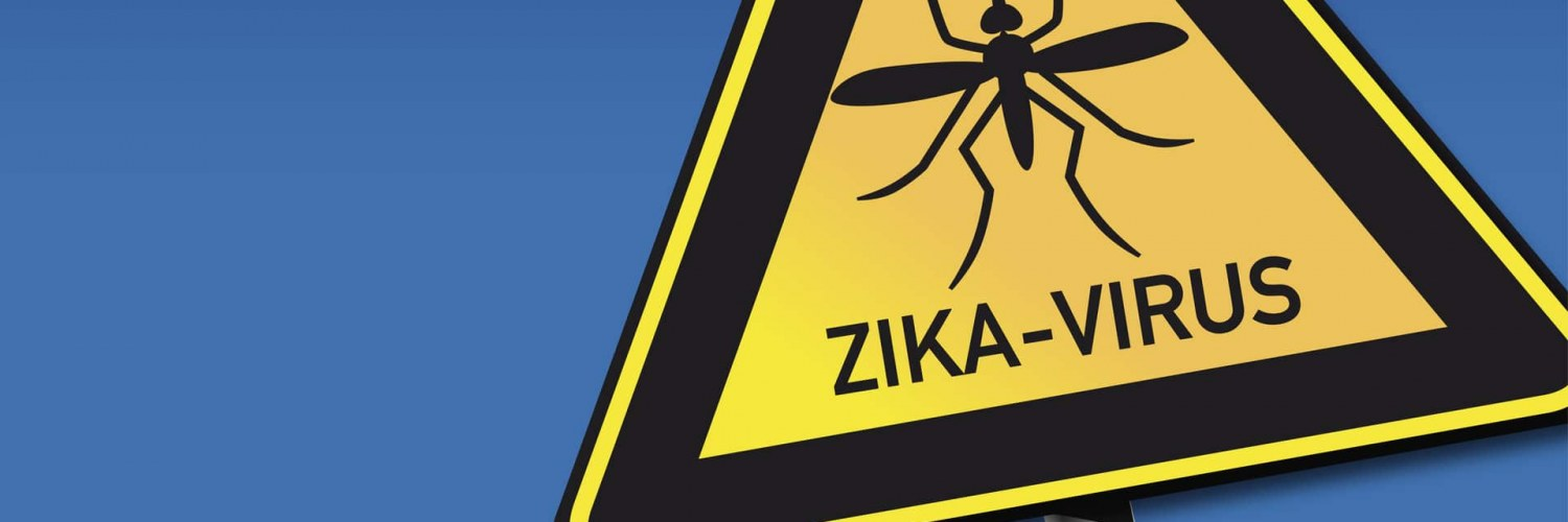 virus_zika_moustique