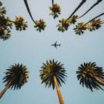 Job Mexique Conseiller en voyage