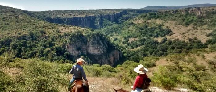Cheval San Miguel Allende Mexique