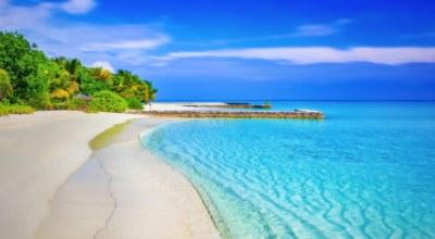 Avis voyageur avec Mexique Découverte Marine C.
